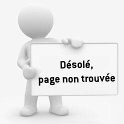 formation sites internet - page absente de google